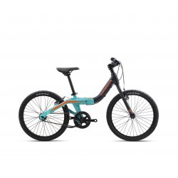 Orbea Grow 2 IV Black Jade Green (Satin - Gloss)